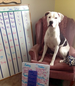 Lois models my whiteboard collection. I've tried writing tasks on her, but she doesn't erase as well.